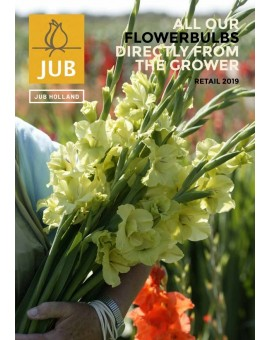 JUB Holland retail catalogue 2018 - Autumn