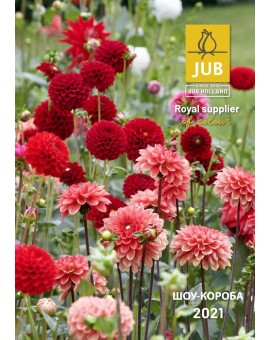 Russian Show Box Catalogue Spring 2021