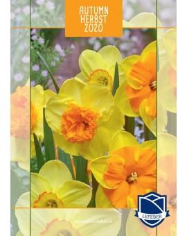 Catalogus 2020 Autumn-LR